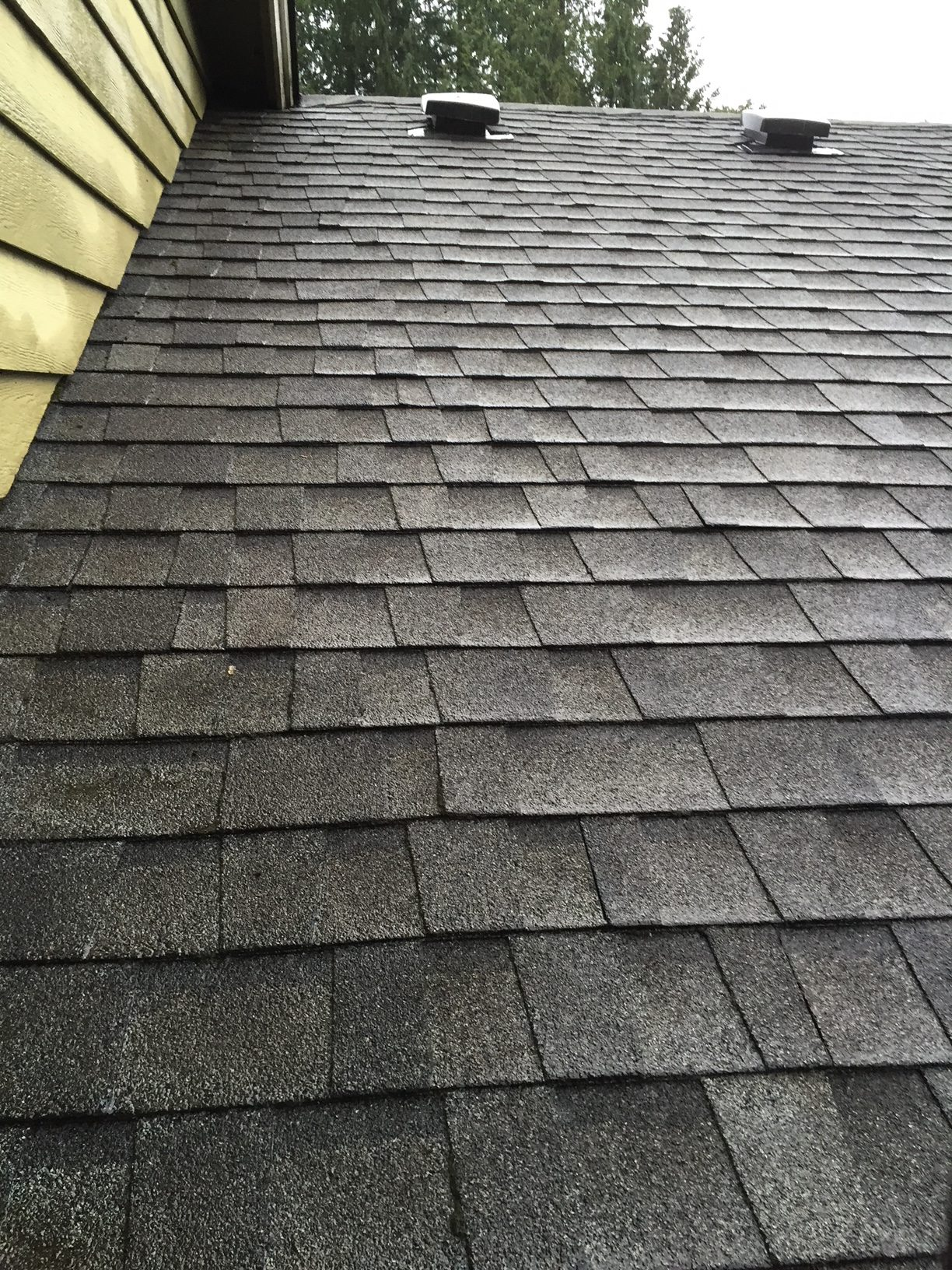 Roof Cleaning First Response Exterior Detailing Llc